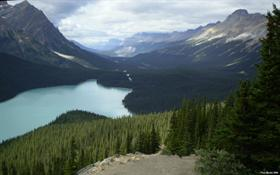 Canadian Rockies 2