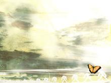 omnera - flutterby