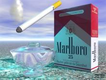Smoker`s Heaven
