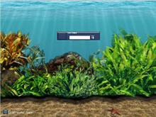 Aquarium Scene Five