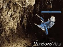 Windows Vista Kingfisher 1.1