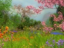 Spring Potpourri 2