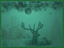 Evening Rest