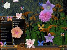 Natural Desktop