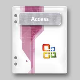 Microsoft Access 2003 File
