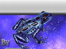 Azureus frog