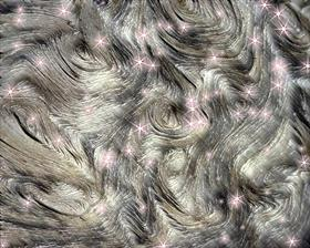 Wood Circles n Stars