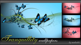 Tranquillity walls