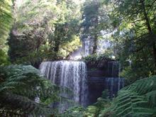 Russell  Falls 3