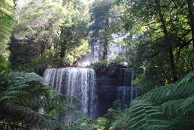 Russell  Falls 3