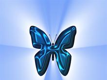 Blue Butter fly
