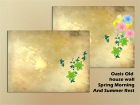 Oasis_Old house wall