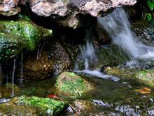 Water Falling On Rocks