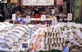 Fish Market Mod