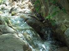 Natural Stream II