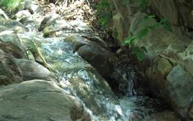 Natural Stream II