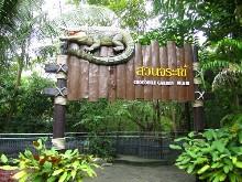 Crocodile Garden