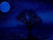 Blue_Night