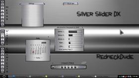 Silver Slider_DX