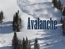 Avalanche ScSv