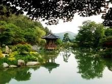 Hanok Arboretum