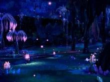 Tera Pond