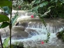 a beautiful cascade