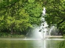 Park in Dresden
