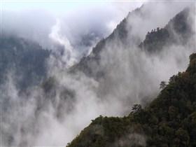 Aufsteigender Nebel
