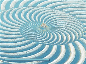 Spiral Sunbathers