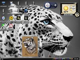 tiger77