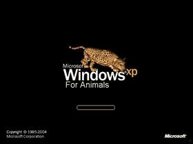 Xp For Animals