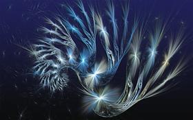 Starlit Spiral