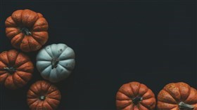 Pumpkins on Dark Background